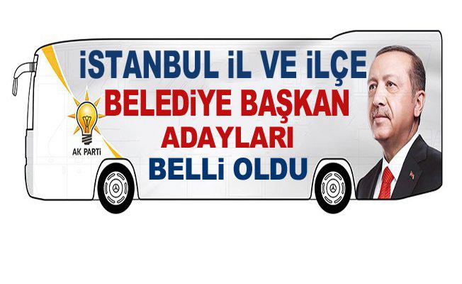 İstanbul Büyükşehir Belediye Başkan Adayı Binali Yıldırım