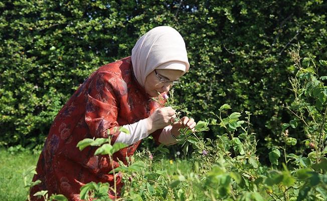 Bahçede yapılan eğitim çalışmaları daha çok okula duyurulmalı