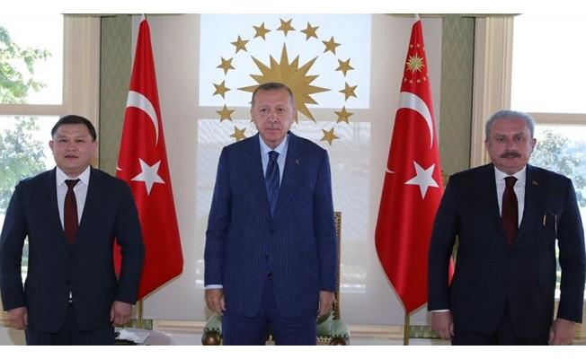 Erdoğan, Kırgızistan Meclis Başkanı Cumabekov'u kabul etti