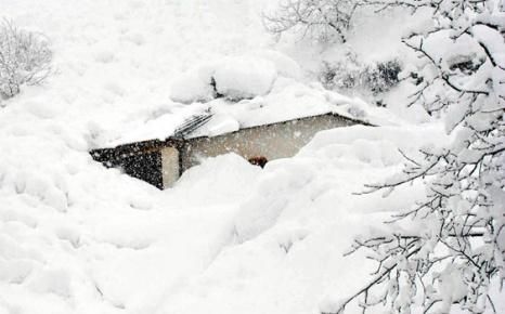 Ağrı'da Çatalipaşa köyünde 6 evin üzerine çığ düştü