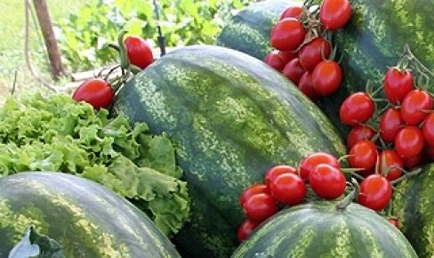 Başkent'li en çok karpuz ve domatesi seviyor