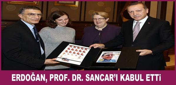 Cumhurbaşkanı Erdoğan, Prof. Dr. Sancar'ı Kabul Etti