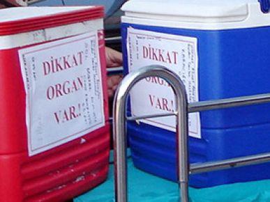 Gazi, organ naklinde bir ilki yapacak