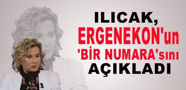 Ilıcak, Ergenekon'un 'bir numara'sını açıkladı