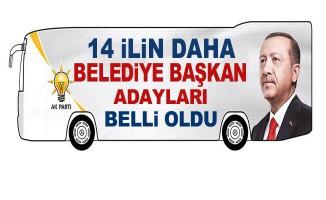 Büyük sürpriz! Erdoğan 14 adayı daha açıkladı