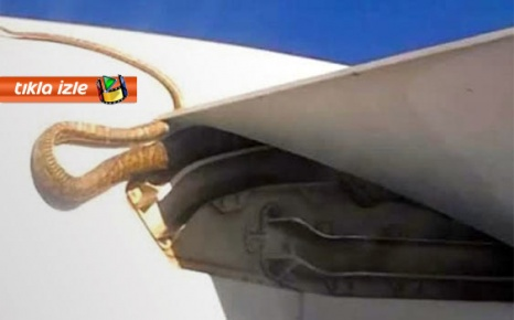 Uçağın kanadında dev piton...